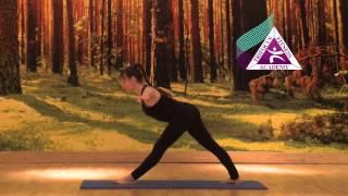 Yoga - Parivritta Trikonasana (Revolved Triangle Pose)