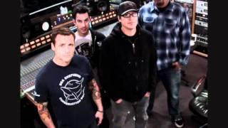 Pennywise - Bro hymn Tribute (Lyrics on Screen)