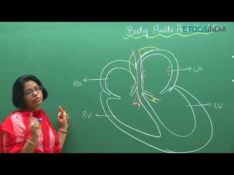 NEET video lectures of  Body fluids and its circulation by Dr  Akanksha Aggarwal AA  Mam