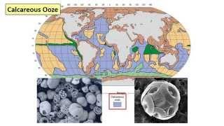 13 - Deep sea sediments