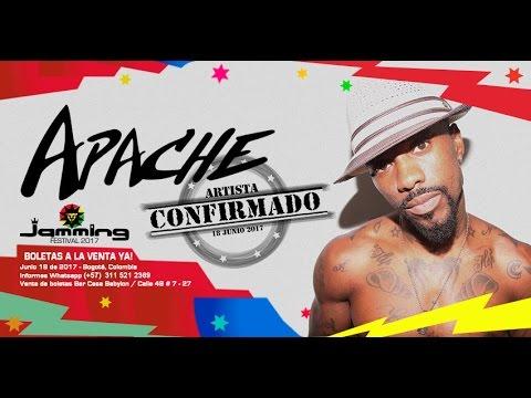 Especiales Jamming Festival 2017 - Apache (Venezuela)