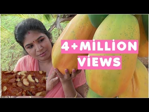 ORGANIC FARM FRESH PAPAYA DESSERT | RIPE PAPAYA HALWA | HEALTHY VILLAGE FOOD