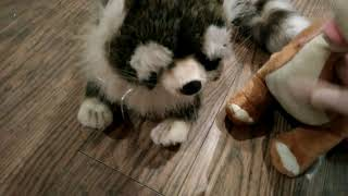 Сериал смотреть онлайн|Школа животных (3 серия) целый день с щенятами