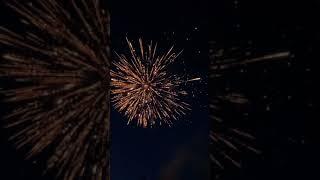 Generic 4th of July Firework V…