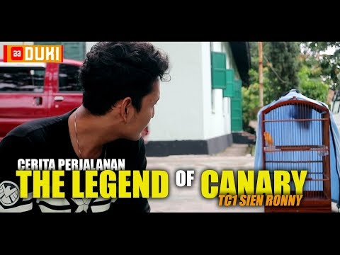 tc1-sien-ronny...-the-legend-of-canary...