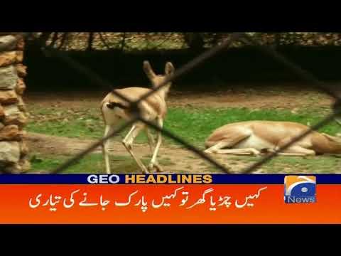 Geo Headlines - 11 AM - 17 June 2018
