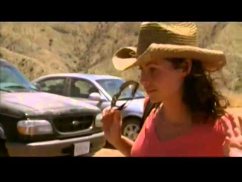 The Virgin of Juarez Movie  voiced by Los Angeles Voice Over Actor Jeff McNeal