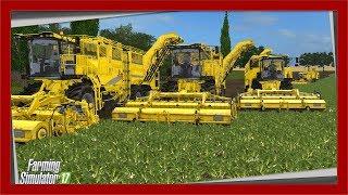Buraczany BIZNES S10E6 | Farming Simulator 17