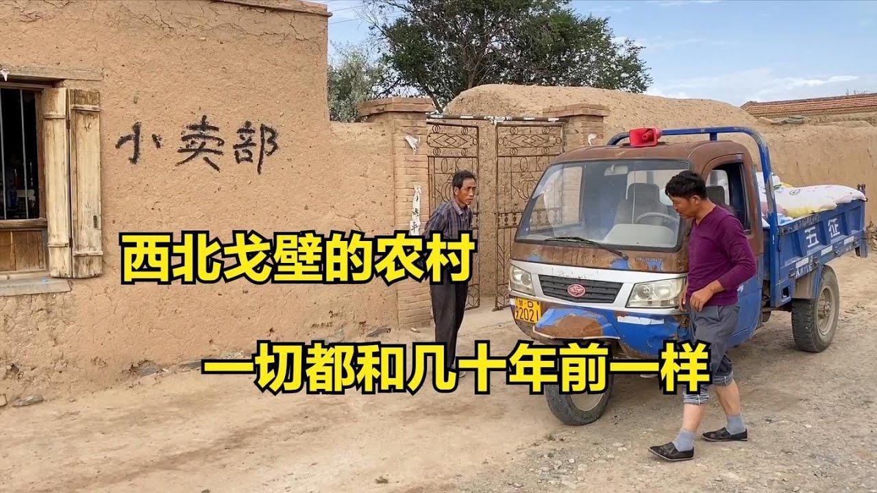 甘肃戈壁里的农村,土房土砖祠堂都塌了,为啥村民就是不愿意离开
