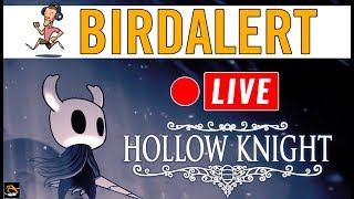HOLLOW KNIGHT (Game sound muted for a bit 😋)- Indie Game Live Stream | Birdalert [PC]