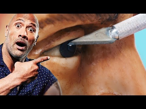I try to make Dwayne Johnson's head out of chocolate (The Rock)
