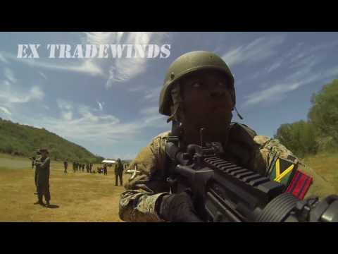 Canadian Army's 2016 in 60 seconds