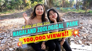 A day at the zoo | Nagaland Zoological Park