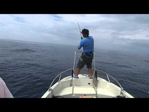 tailwalk MOVIE 2014 OFFSHORE IMAGE VIDEO