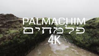 חוף פלמחים - palmachim beach