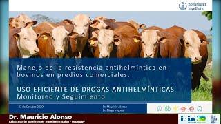 eficiență antihelmintică