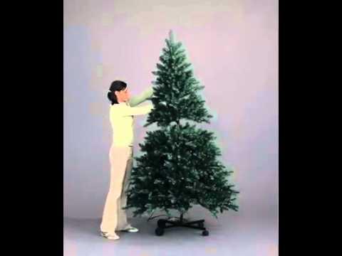 Devonshire Flip Tree - YouTube