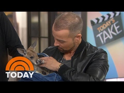 Joey Lawrence Gets A Surprise Visit From A Very Different Kind Of 'Joey' | TODAY