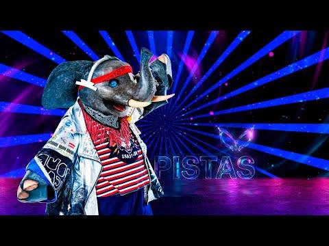 #ElefanteEs ¡Yuri abandona el foro por adivinar la identidad de Elefante! | Pistas