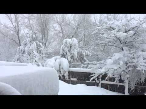 Arvada Colorado Blizzard Report March 2016
