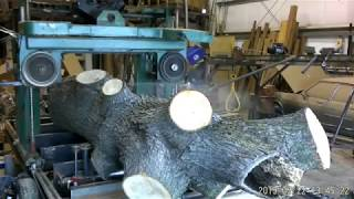 Homemade sawmill cutting Maple Log into live edge slabs Part 1