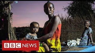 UN warns of famine in northern Ethiopia - BBC News