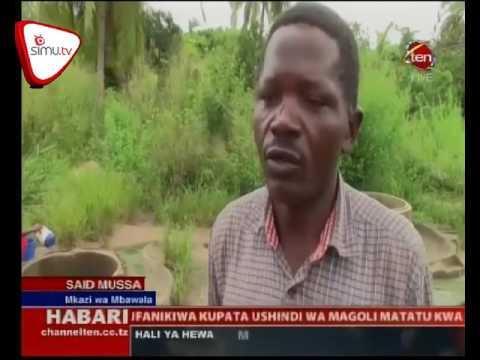 Mvua Zawaondolea Adha Ya Maji Wakazi wa Mtwara
