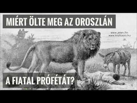 Miért ölte meg az oroszlán a fiatal prófétát? (folytatás)
