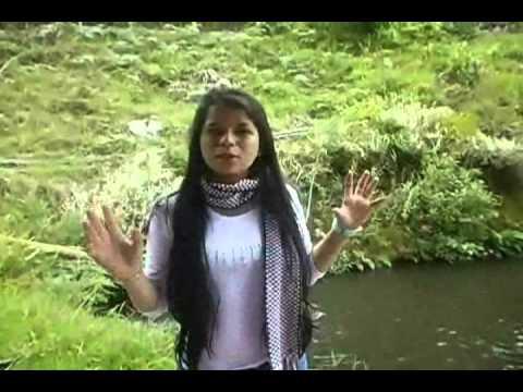 Cria de cachama y trucha youtube for Criaderos de truchas y tilapias