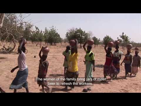 Daily Life in a Village in Africa