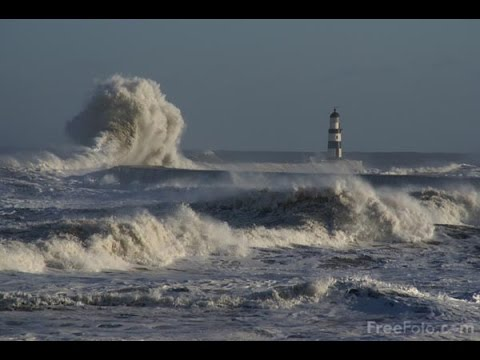 Rare extremely large waves on Lake Ontario