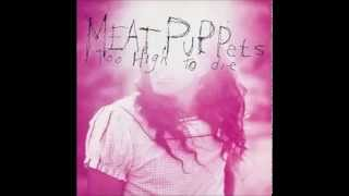 Watch Meat Puppets We Dont Exist video