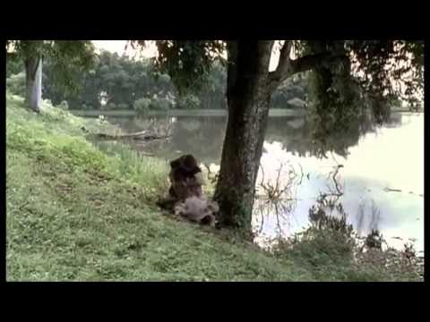 Que Amor É Esse - Luma Elpidio (Video Oficial) from YouTube · Duration:  7 minutes 3 seconds
