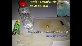 Kuşlar İçin Doğal Antibiyotik Yapımı Ve Tedavi Ettiği Hastalıklar