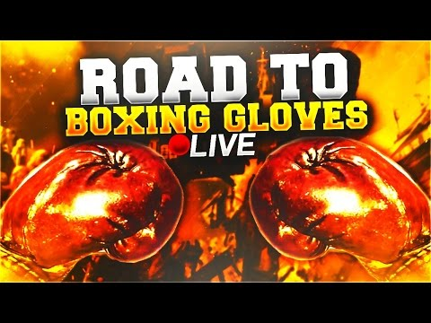 ROAD TO BOXING GLOVES IN BLACK OPS 3! COMPLETING NEW CONTRACTS - Stream Quality Sucks