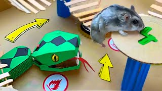 🐹🐍Snake Hamster Maze with Traps 😱[OBSTACLE COURSE]😱 + BONUS