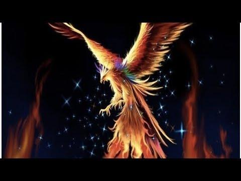 Zümrüdü Anka Ku?u anlam? ne Simgurg nedir Phoenix ilginç hikayesi DuckNews TV
