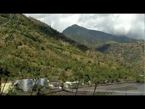The Megachiroptera Of The Comoros