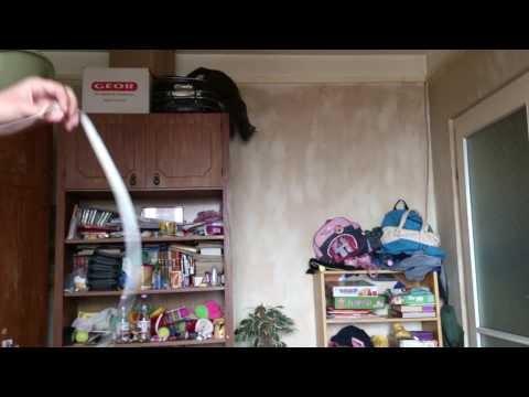 Cat Falls Off the Wardrobe