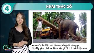 Game Đố Vui - Mỏ dầu trên tờ 10 nghìn tên gì | Địa danh trên tờ tiền Việt Nam