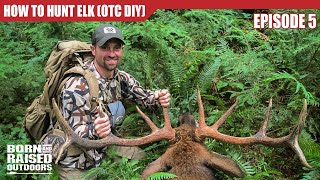 How to FIND ELK during SEASON