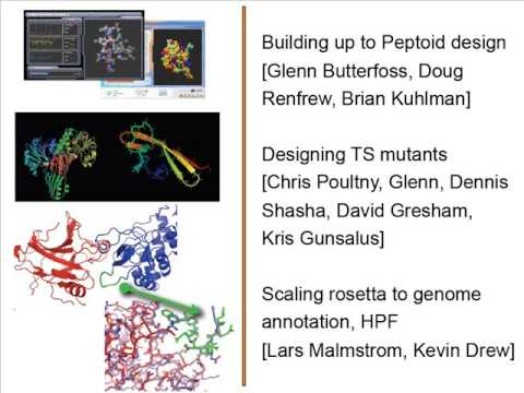 """Dr. Richard Bonneau """"Using protein design to dissect the biological networks"""" March 11, 2010"""