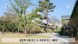 DIMF 뮤지컬스타 1차 예심 대면 심사 Vlog