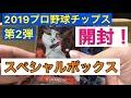 【開封】カルビー2019プロ野球チップス 第2弾 スペシャルボックス