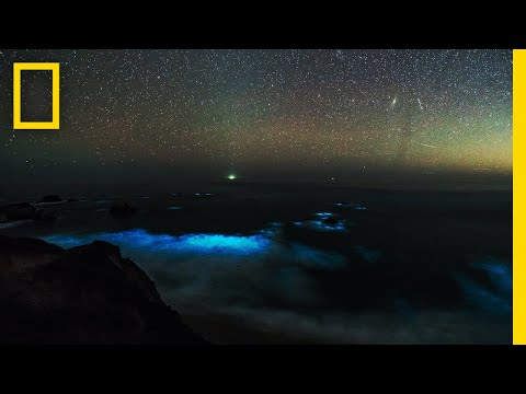 See a Glowing Plankton Bloom in California's Big Sur | National Geographic