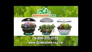 видео гидропонная установка домашний сад