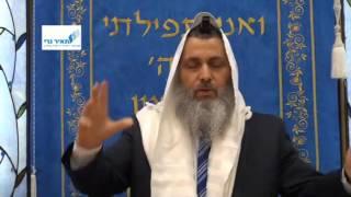 הרב ניר בן ארצי - פרה אדומה וחיי נצח