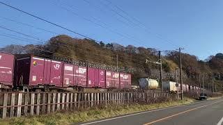 JR北海道キハ261系5000番台 はまなす編成 「特急北斗6号」室蘭本線富浦 2020.11.8 140周年記念イベント