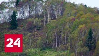 Жители Сахалина активнее всех разбирают дальневосточные гектары(Подпишитесь на канал Россия24: https://www.youtube.com/c/russia24tv?sub_confirmation=1 За последние три дня там подано свыше 300 заявок..., 2016-10-04T04:33:38.000Z)