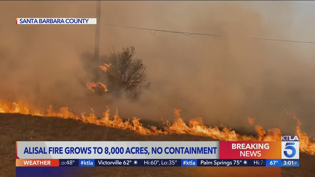 The Alisal Fire is rapidly growing near Santa Barbara